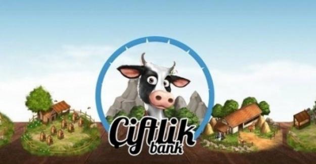 Çiftlik Bank soruşturması kapsamında bir kişi tutuklandı