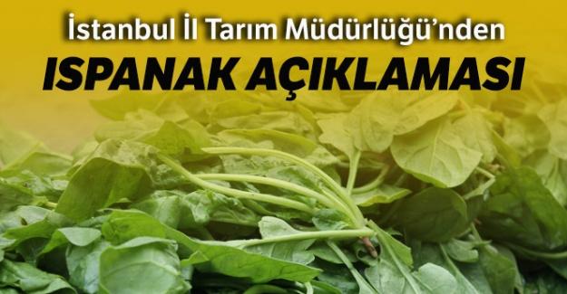 İstanbul İl Tarım Müdürlüğü'nden ıspanak zehirlenmelerine ilişkin açıklama