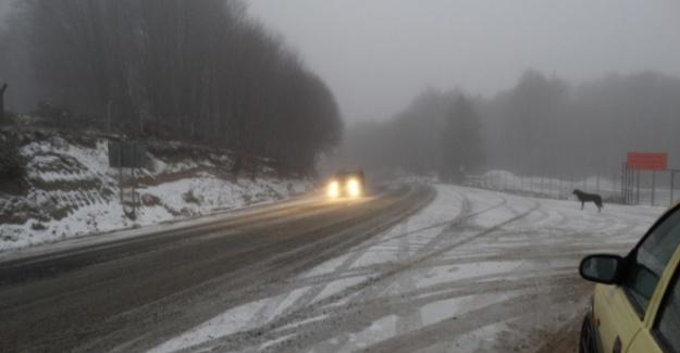 Kütahya'ya mevsimin ilk karı yağdı