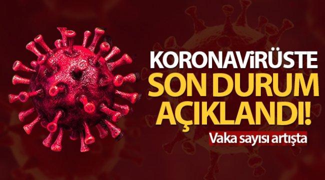Türkiye'de son 24 saatte 9.572 koronavirüs vakası tespit edildi