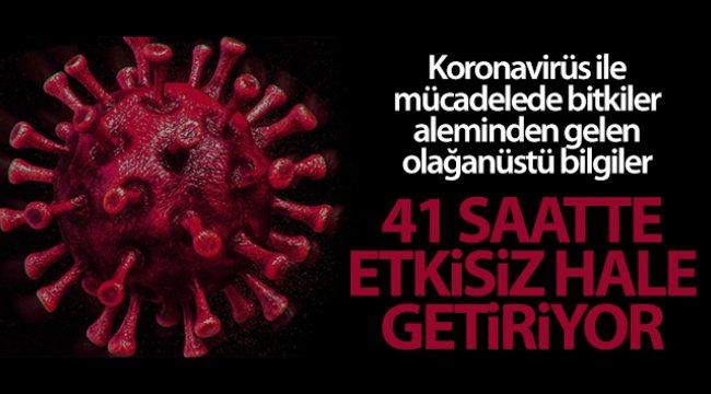 Korana virüsüne karşı kritik çözüm