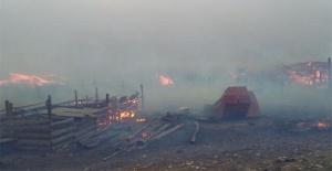 Çin'de başlayan orman yangını Rusya'ya sıçradı