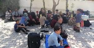 72 kaçak göçmen yakalandı