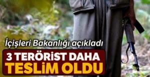 İçişleri Bakanlığı açıkladı: 3 terörist daha teslim oldu